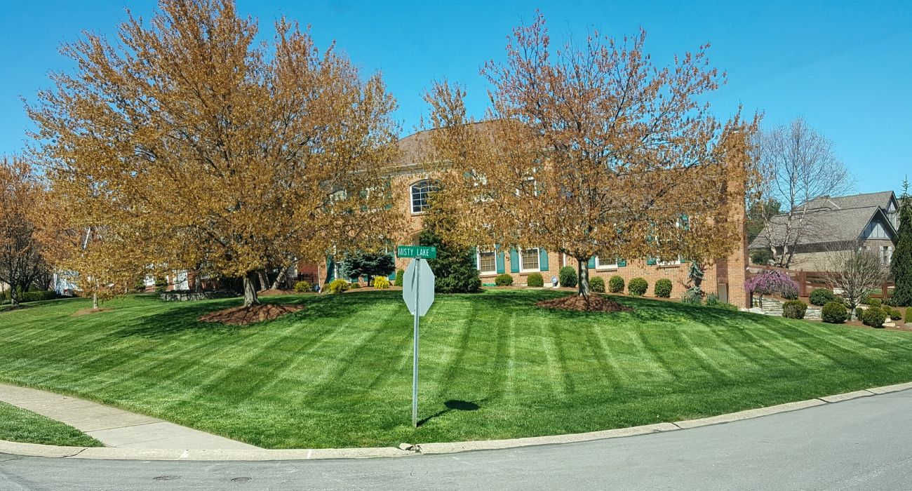 Diamond cut grass lines in front of corner house
