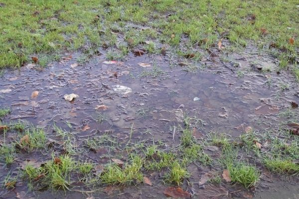 Standing Water Lawn Solutions